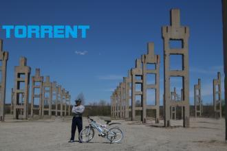 Torrent - Моя свобода движения, мой Torrent